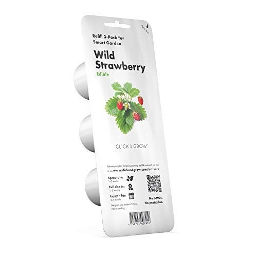 Click and Grow SGR24x3 Smart Garden Wild Strawberry Plant Pods, 3-Pack