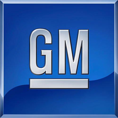 Genuine GM Molding Part# - 15876402