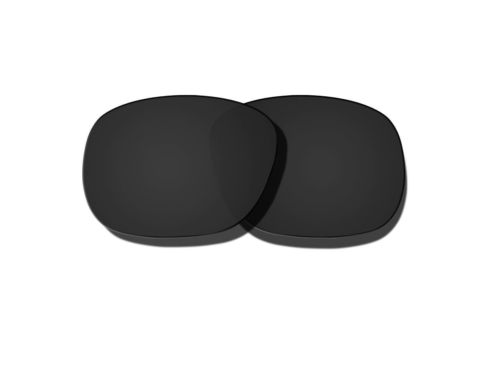 Black Polarized Replacement Lenses for Oakley Enduro Sunglasses