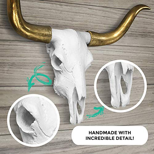 "WALL CHARMERS Large White + Gold Longhorns Faux Longhorn Skull - 27.5"" Faux Taxidermy Animal Head Wall Decor - Handmade Farmhouse Decor"