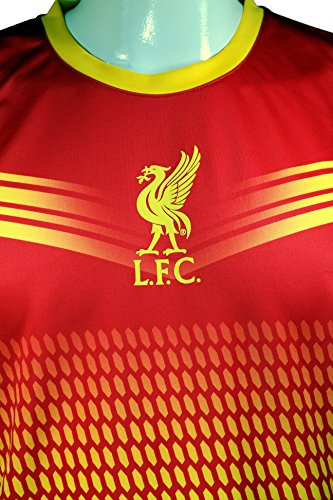 Icon Sport Group Liverpool F.C. Official Adult Soccer Poly Jersey P005