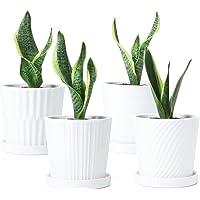Deals on Greenaholics Plant Pots 5.1 Inch Cylinder Ceramic Planters Set of 4