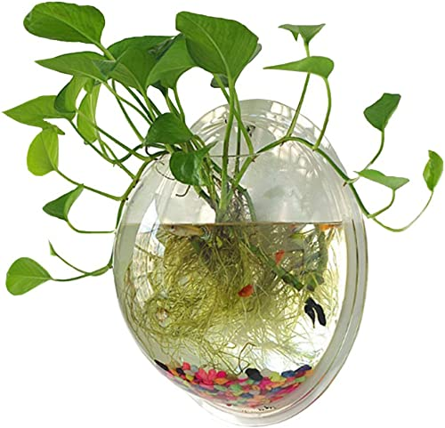 Sweetsea-Hanging-Wall-Mounted-Fish-Bowl-Betta-Tank