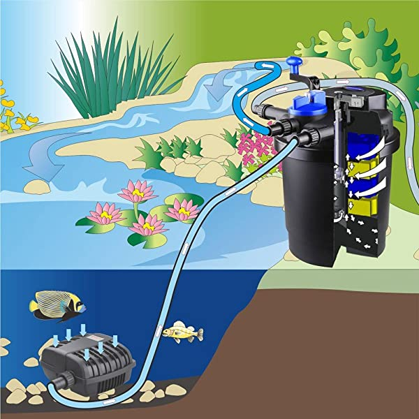 Koi-Pond-Filter