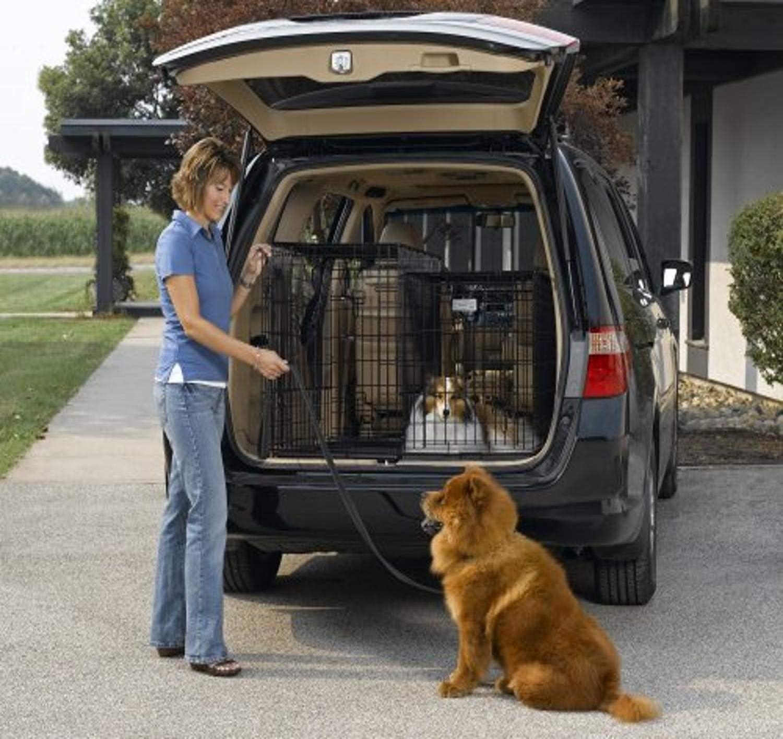 Midwest Double Door Pet Carrier
