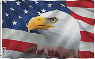 American Eagle USA
