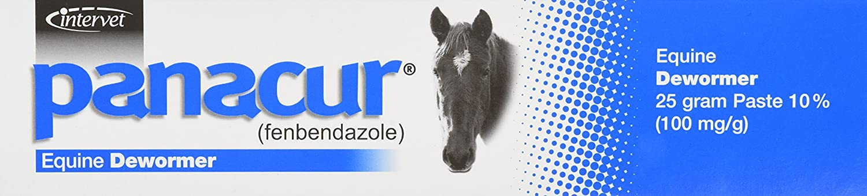 INTERVET D PANACUR Dewormer Horse Paste