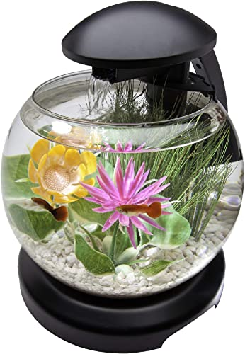 Tetra-1.8-Gallon-Waterfall-Globe-Aquarium-Kit