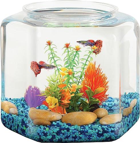 Koller-Products-BettaTank-2-Gallon-Hex-Fish-Bowl