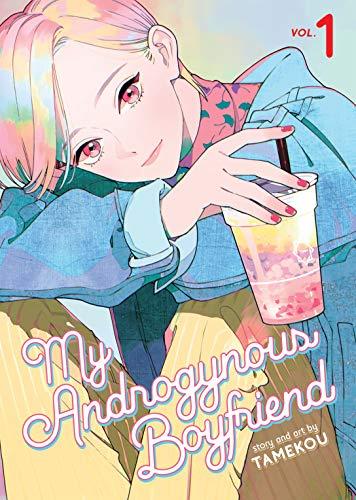 My Androgynous Boyfriend, Vol. 1 by Tamekou