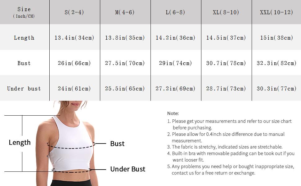 womens padded sports bra fitness workout s m l xl xxl small plus size