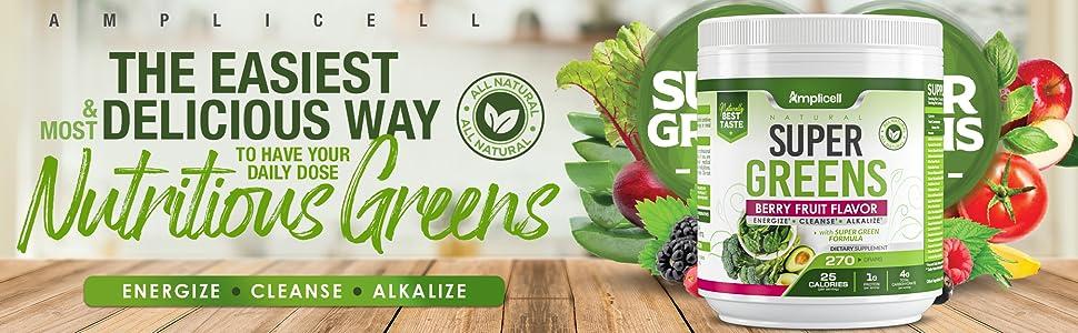 super green plant food drink mix green powder vegetable powder green powder supplement superfood