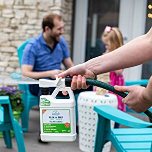 wondercide easy to use cedar flea tick spray roaches chiggers mosquitos